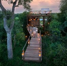 Real Treehouse The World U0027s Best Outdoor Hotel Rooms Revealed From A Safari Tree