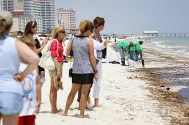 as oil washes ashore property managers sharply cut condo rents