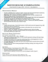sample hybrid resume server combination resume sample sample