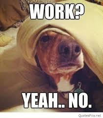 Tired Dog Meme - funny monday dog saying quotes memes photos