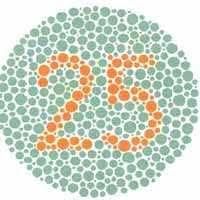 What Causes Red Green Color Blindness Best 25 Color Blindness Test Ideas On Pinterest Diy Newspaper