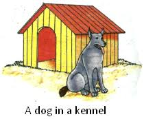 homes of animals homes of bird rabbit mouse dog horse hen