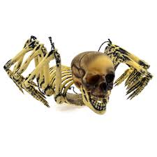 Halloween Decoration Party by Halloween Skull Decorations