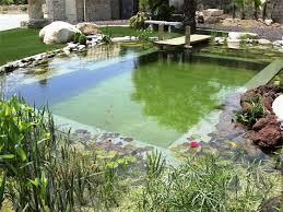 How To Make A Lazy River In Your Backyard Diy Natural Pools Build Your Own Swimming Pond