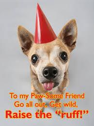 party animal funny birthday card for friends birthday u0026 greeting