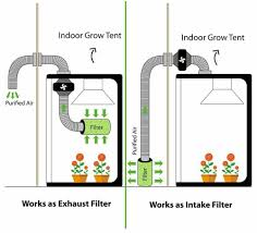 intake fan for grow tent how to set up a grow tent a complete guide mygardenplant