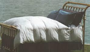 California King Goose Down Comforter Shop At Three Dog Down Comforters Goose Down The Sundowner