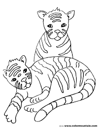 twin tiger color sheet create a printout or activity