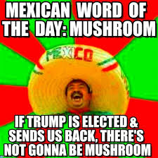 Meme Word - 114 best mexican word of the day collection images on pinterest