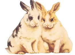 vintage rabbit bunny clipart by jinifur on deviantart