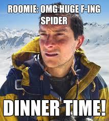 Huge Spider Memes Image Memes - roomie omg huge f ing spider dinner time bear grylls quickmeme