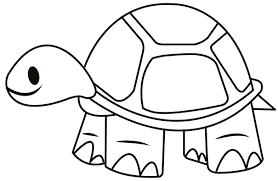 tortoise coloring7 com
