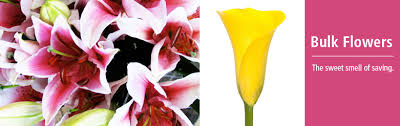 flowers in bulk 50 100 bulk flowers bj s wholesale club