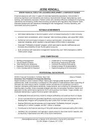sample resume executive vice president name essays urging ratification constitution sports topics for