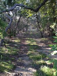 Land For Sale Comfort Texas 89 Best I Found Comfort In Texas Images On Pinterest Texas Hill