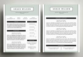 two page resume sample resume example