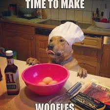 Dog Cooking Meme - need a laugh these animal memes should do the trick breakfast