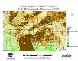 Kansas vegetaion images K state agronomy eupdate issue 635 may 26th 2017 gif