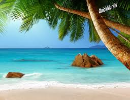 secluded beach peel stick wall mural secluded beach peel stick canvas wall mural