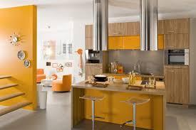 cuisine de couleur enchanteur couleurs peinture cuisine et couleur tendance chambre