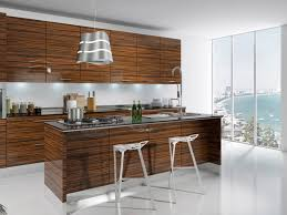 Kitchen Cabinets Modern Modern Kitchen Cabinets Los Angeles Home Decorating Ideas