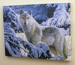 Wolf Home Decor by Amazon Com Wolf Led Lighted Canvas Print Home Decor Lone Gray