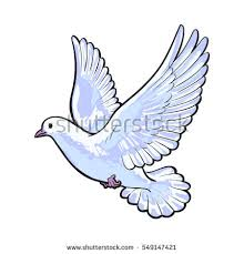 two free flying white doves sketch stock vector 548527246