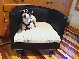 chair rolling dog bed petdiys com