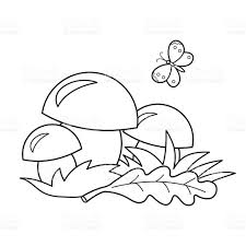 coloring page outline of mushrooms coloring book for kids stock