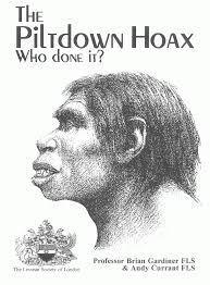 analogy homology anthropology
