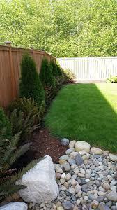 best 25 arborvitae landscaping ideas only on pinterest backyard