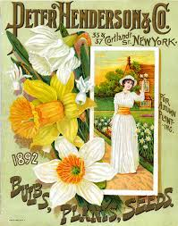 Catalog Covers by Antique Seed Catalogue Covers Beautiful Restored Images Cd Ebay