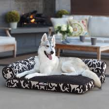 Dog Bed With Canopy Furniture Using Inspiring Costco Dog Beds For Cozy Pet Furniture