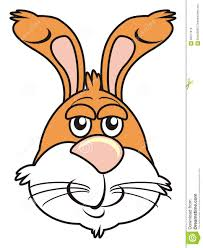 brown bunny face stock illustration image 65917019