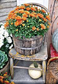 Pinterest Harvest Decorations Fall Harvest Decor Weendecor03 Billybullock Us