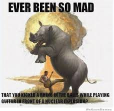 So Mad Meme - ever been so mad that you kicked a rhino in the balls weknowmemes
