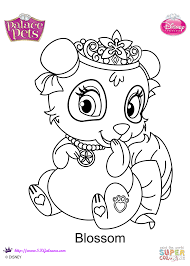 Palace Pets Pumpkin by Palace Pets Blossom Coloring Page Free Printable Coloring Pages