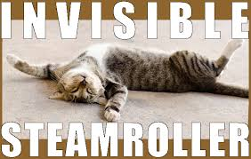 Invisible Cat Meme - general funny cats microgaming meows up to 1630 welcome package