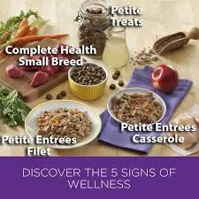 wellness complete health natural dry small breed healthy weight