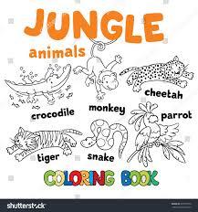 set funny crocodile tiger snake cheetah stock vector 339757370