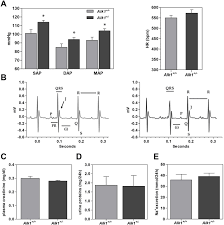 Map Mean Arterial Pressure Heterozygous Disruption Of Activin Receptor Like Kinase 1 Is