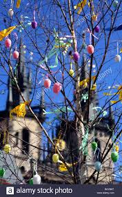 egg decorations easter egg decorations hung on a tree town square staromestske