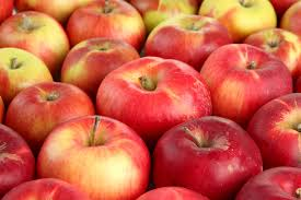 halloween city cortland ny the best apple picking near nyc for kids and families