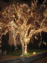 57 best outdoor string lights images on