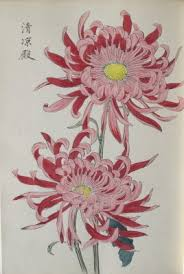 Japanese Flowers Paintings - 60 best japanese flowers images on pinterest japanese painting