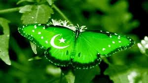 Pakistans Flag Pakistan Best Wallpapers Hd Free For You Hd Wallpaper