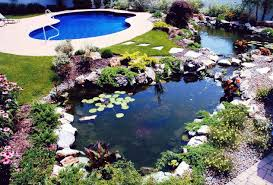 unusual garden ideas outdoor and patio two round backyard koi pond ideas mixed with
