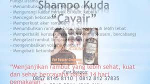 Sho Kuda Pemanjang Rambut 085781458110 43 rb jual shoo kuda caviar pemanjang rambut cepat