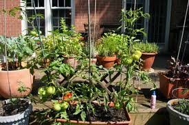 Urban Home Victoria Gardens - garden and patio urban container flower vegetable gardening with