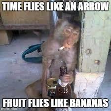 Drunken Memes - drunken ass monkey meme generator imgflip
